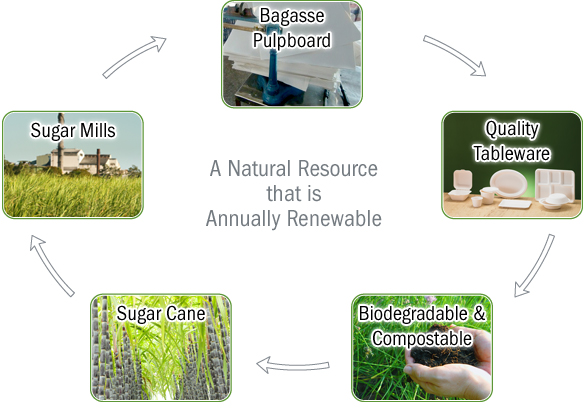 lifeCycle-bagasse
