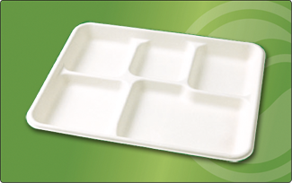 "T009 | 10"" x 9"" Compartment Tray"